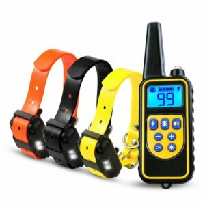 dog training collar lr remote 800m 3x dogs rechargeable